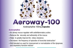 Aeroway - 100