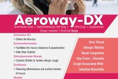 Aeroway-DX