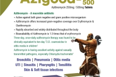 Azigood-250